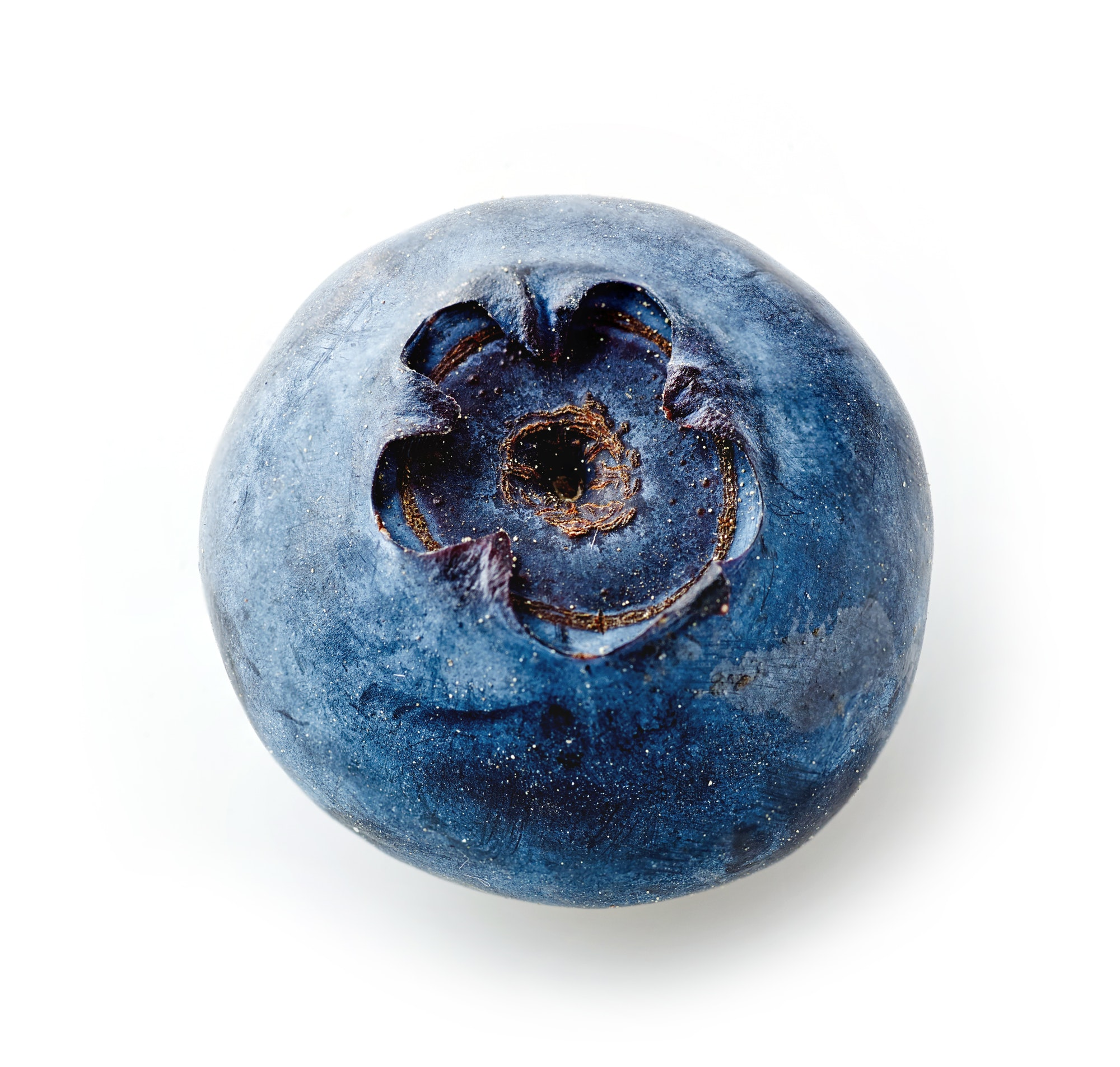 fresh macro blueberry on white background